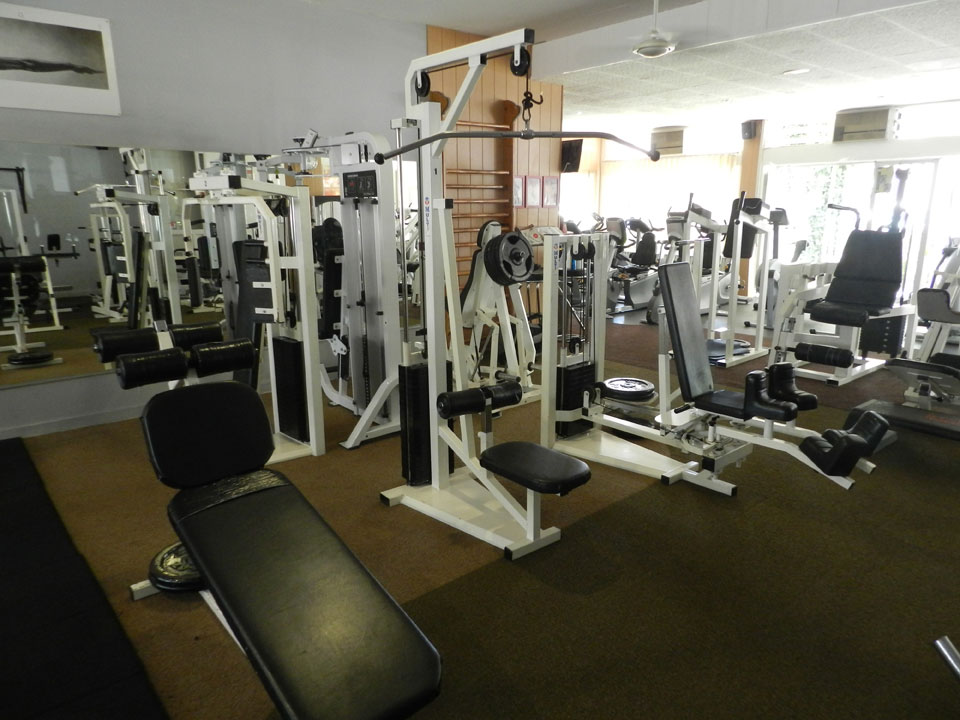 musculation grenoble espace viking